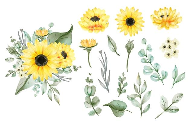 Conjunto de folhas e girassóis amarelos aquarela isolados Vetor Premium