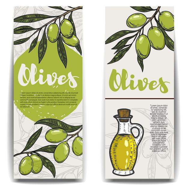 Conjunto de folhetos de azeite. ramo de oliveira. elementos para, panfleto, cartaz. ilustração Vetor Premium