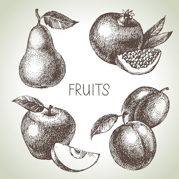 Conjunto de frutas esboço desenhado de mão. alimentos ecológicos. ilustração Vetor Premium