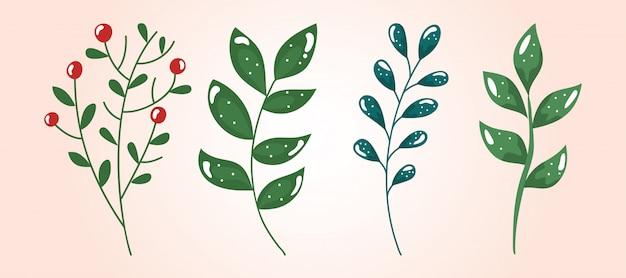 Conjunto de galhos com folhas e sementes Vetor grátis