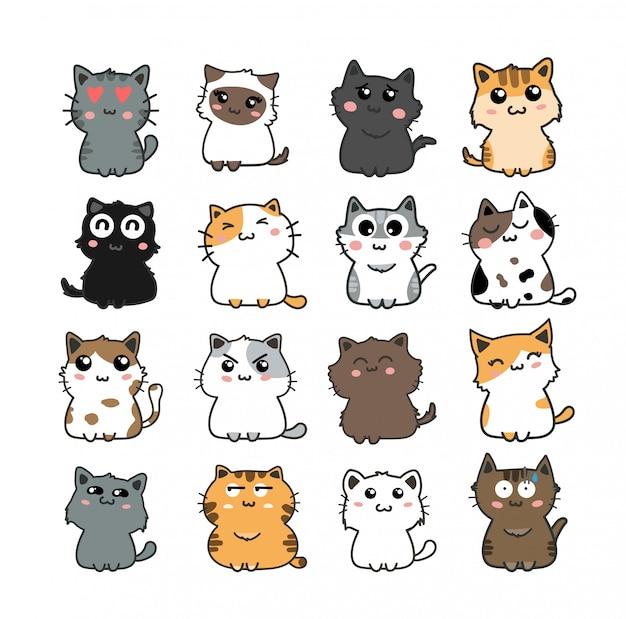 Conjunto de gato bonito Vetor Premium