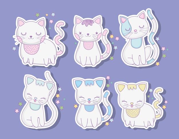 Conjunto de gatos bonitos animais com bigodes Vetor Premium