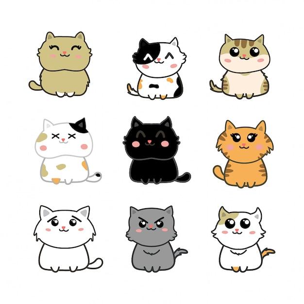 Conjunto de gatos bonitos Vetor Premium