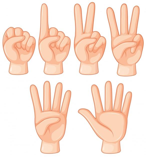 Conjunto de gesto com a mão Vetor grátis