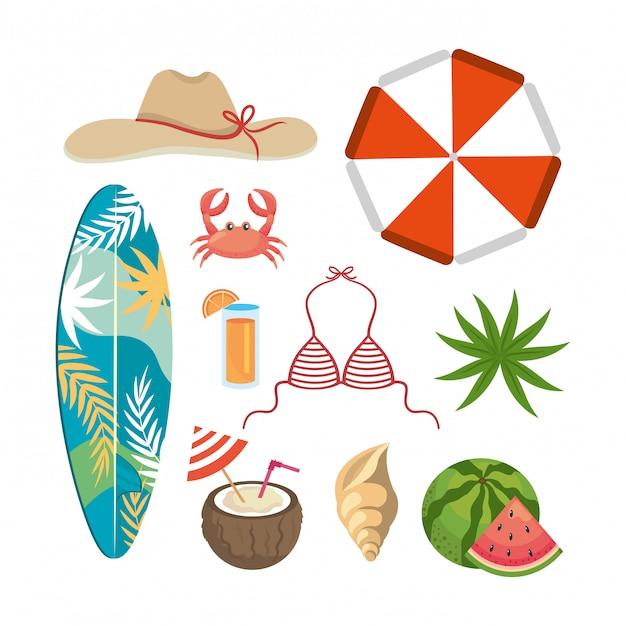 Conjunto de horário de verão com folhas de plantas exóticas e temporada de viagens. isolado Vetor Premium