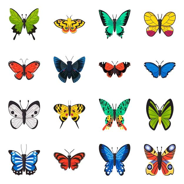 Conjunto de ícone dos desenhos animados de várias espécies de borboletas. Vetor Premium