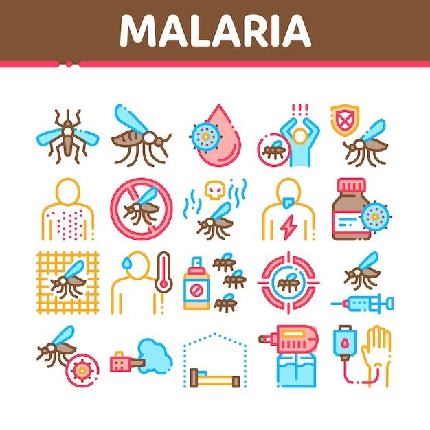 Conjunto de ícones de coleta de dengue de malária Vetor Premium