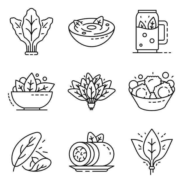 Conjunto de ícones de espinafre. conjunto de contorno de ícones do vetor de espinafre Vetor Premium