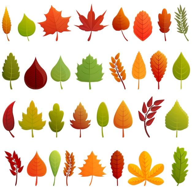 Conjunto de ícones de folhas de outono. conjunto de desenhos animados de ícones do vetor de folhas de outono Vetor Premium