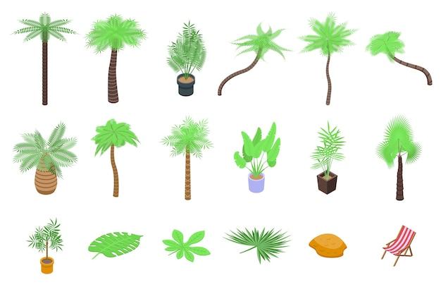 Conjunto de ícones de palmeira. conjunto isométrico de ícones de palmeiras para web isolado no fundo branco Vetor Premium