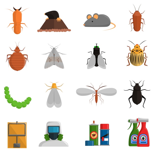 Conjunto de ícones de pragas Vetor grátis