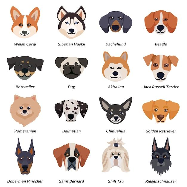 Conjunto de ícones de rostos de cães de raça pura Vetor grátis