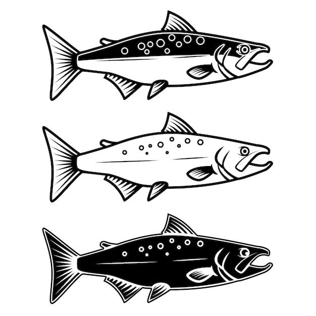 Conjunto de ícones de salmão sobre fundo branco. elemento para o logotipo, etiqueta, emblema, sinal. ilustração Vetor Premium