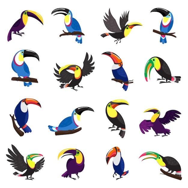 Conjunto de ícones de tucano. conjunto de desenhos animados de ícones de tucano Vetor Premium