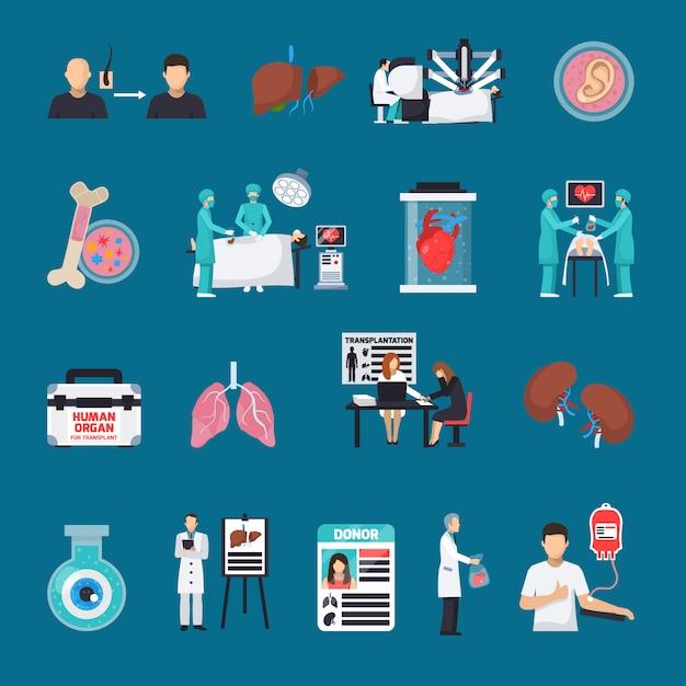 Conjunto de ícones decorativos de transplante Vetor grátis