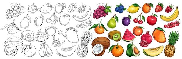 Conjunto de ícones desenhados de frutas e bagas. Vetor Premium