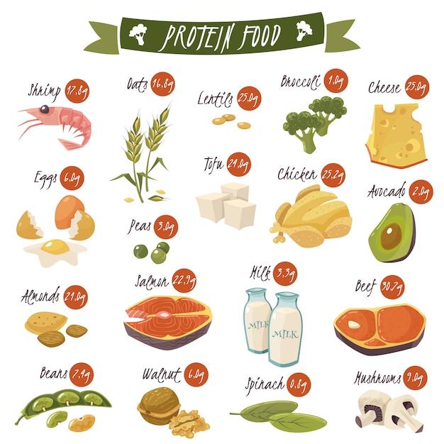 Conjunto de ícones plana de alimentos ricos em proteínas Vetor grátis