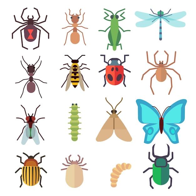 Conjunto de ícones plana de insetos Vetor Premium