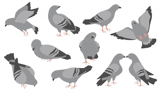 Conjunto de ícones planos de pombos de desenho animado Vetor grátis