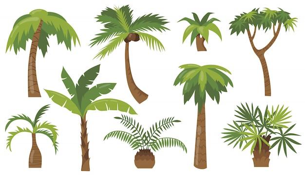 Conjunto de ícones planos de várias palmeiras de desenhos animados Vetor grátis