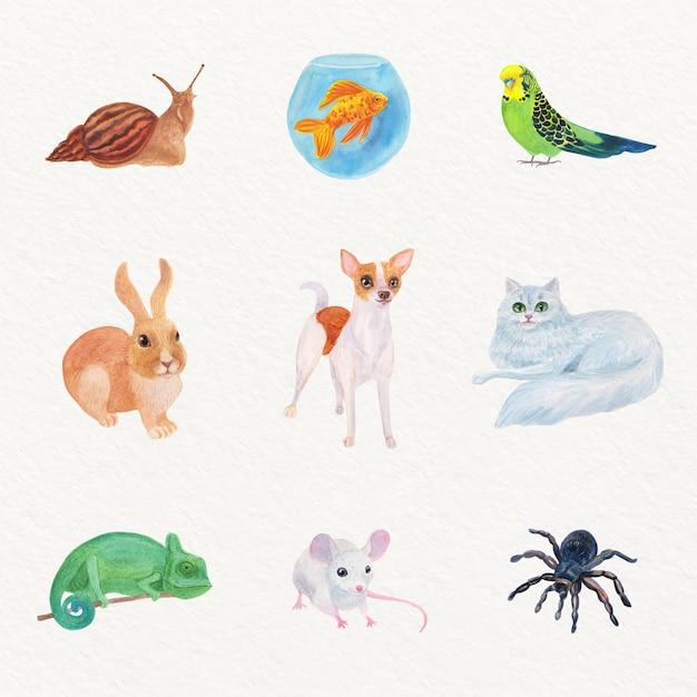 Conjunto de ilustração de diferentes animais de estimação Vetor grátis