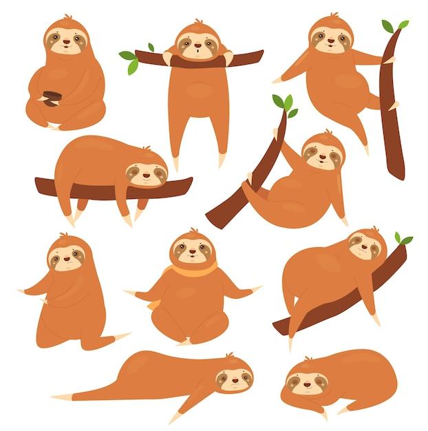 Conjunto de ilustração de preguiças. Vetor Premium