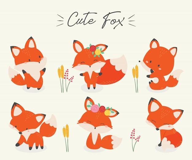 Conjunto de ilustração em vetor fox fofo. Vetor Premium
