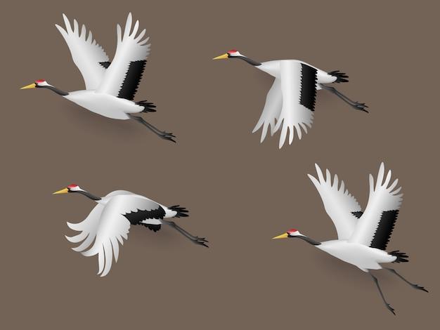 Conjunto de ilustração japonesa crane pássaros voando, ilustração vetorial Vetor Premium