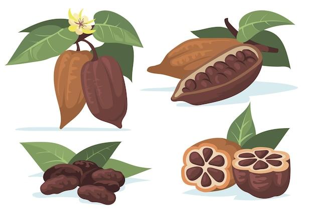 Conjunto de ilustração plana de grãos de cacau coloridos. Vetor grátis