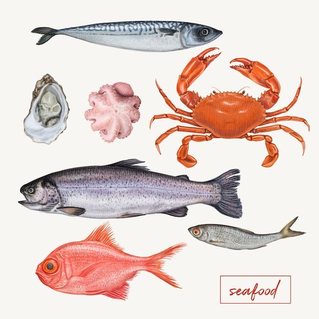 Conjunto de ilustrações de frutos do mar Vetor Premium