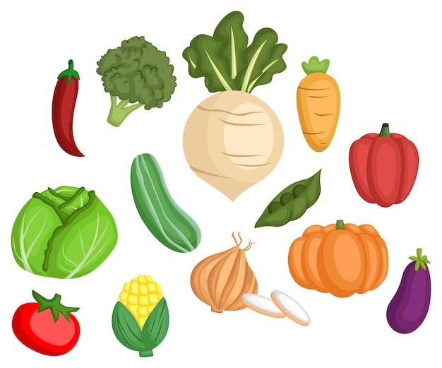 Conjunto de imagem vegetal Vetor Premium