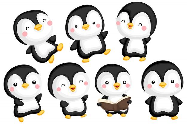 Conjunto de imagens de pinguim Vetor Premium