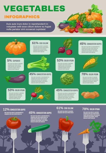Conjunto de infográfico de legumes Vetor grátis