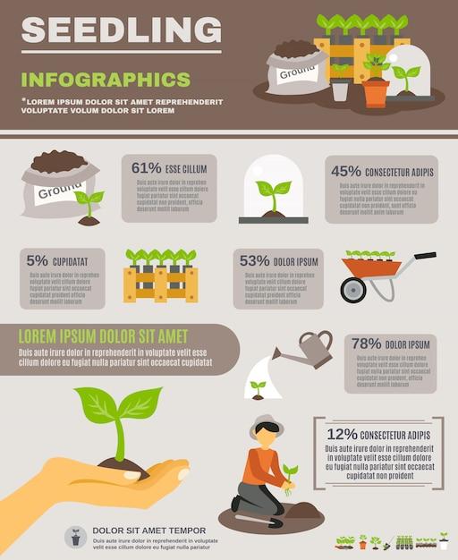 Conjunto de infográficos de mudas Vetor grátis