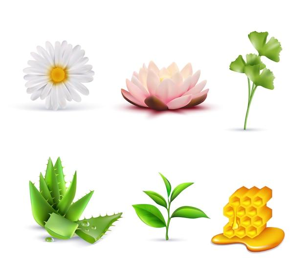 Conjunto de ingredientes cosméticos orgânicos Vetor grátis