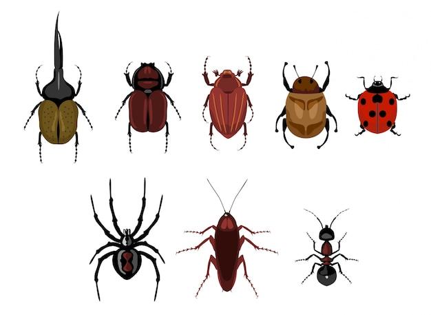 Conjunto de insetos bonito dos desenhos animados. conjunto de insetos rastejantes - formiga, aranha, besouro, barata, joaninha. besouros diferentes em um fundo isolado. Vetor Premium