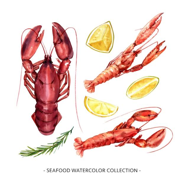 Conjunto de lagostas aquarela isoladas, ilustração de lagosta para uso decorativo. Vetor grátis