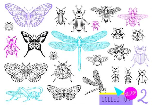 Conjunto de linha desenhada mão grande de insetos insetos, besouros, abelhas, borboleta; mariposa, zangão, vespa, libélula, gafanhoto. estilo vintage croqui silhueta gravada ilustração. Vetor Premium