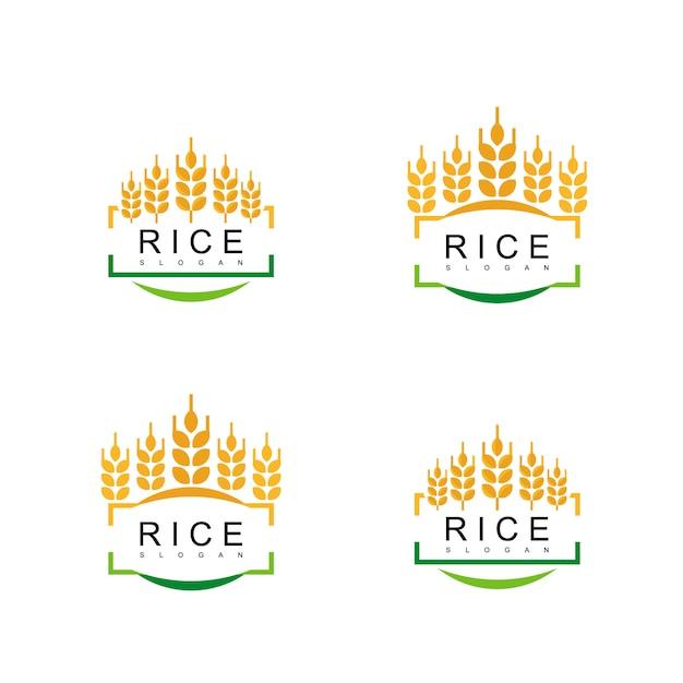 Conjunto de logotipo de emblema de arroz Vetor Premium