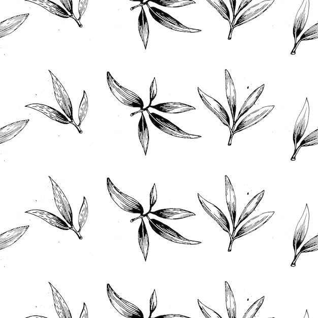 Conjunto de logotipo de ramo de oliveira vector verde. azeite de oliva assinar. símbolo da paz. sinal religioso grego. Vetor Premium