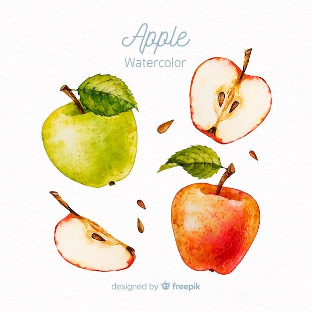 Conjunto de maçã em aquarela Vetor grátis