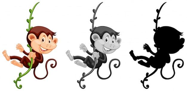 Conjunto de macaco pendurado na videira Vetor grátis