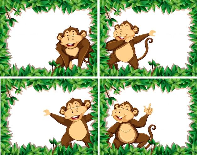 Conjunto de macacos em quadros de natureza Vetor Premium