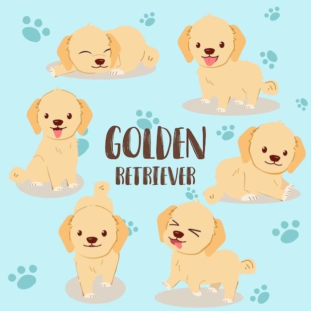 Conjunto de matilha golden retriever Vetor Premium