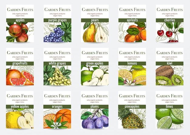 Conjunto de modelo de cartões de frutas Vetor Premium