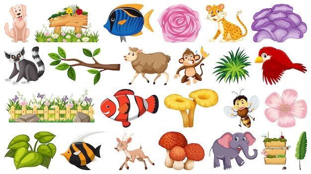 Conjunto de natureza e animais Vetor Premium