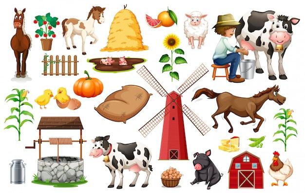 Conjunto de objetos da fazenda Vetor grátis
