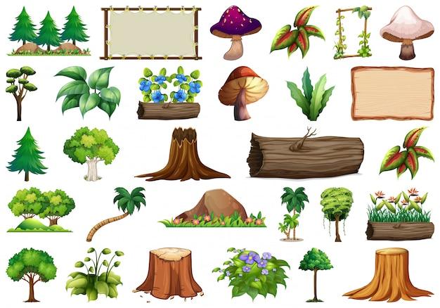 Conjunto de objetos da natureza Vetor grátis