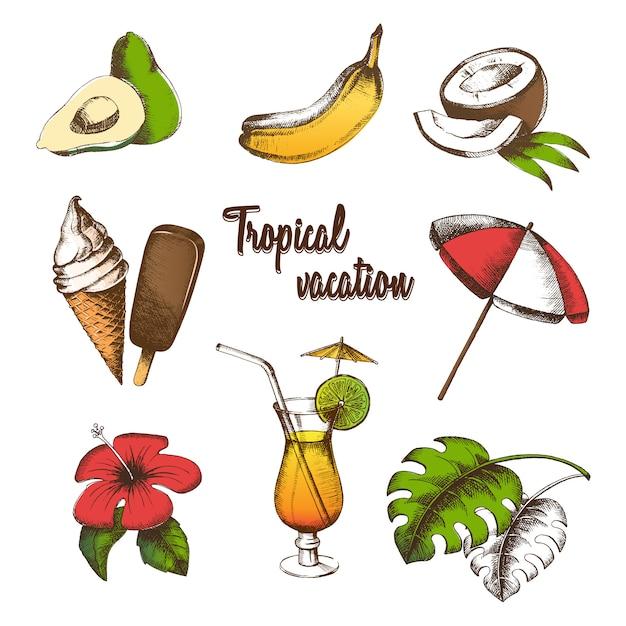 Conjunto de objetos para umas férias tropicais. frutas de verão, coquetel, sorvete, flor tropical, folha de palmeira, guarda-sol pintado em estilo gráfico. desenho à mão livre multicolor. Vetor Premium