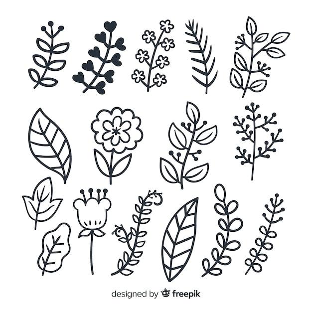 Conjunto de ornamento floral mão desenhada Vetor grátis
